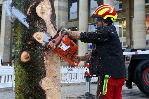 Der Weihnachtsbaum am Schlossplatz steht