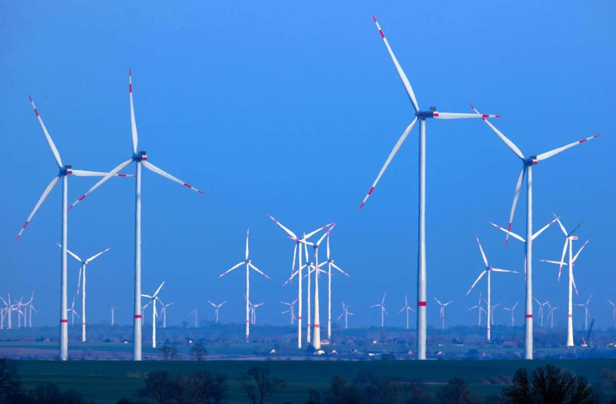 Windpark in Norddeutschland: Die Ökostrom-Förderung muss dringend  reformiert werden, da sind sich fast alle Parteien einig. Foto: dpa/Jens Büttner
