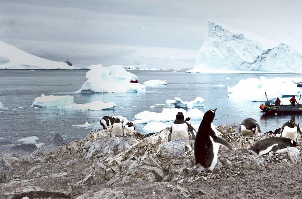 Messungen in der Antarktis zeigen, dass nicht nur am Nordpol, sondern auch im Südpolgebiet  die Eismasse jedes Jahr geringer wird. Foto: spiritofamerica/Adobe Stock