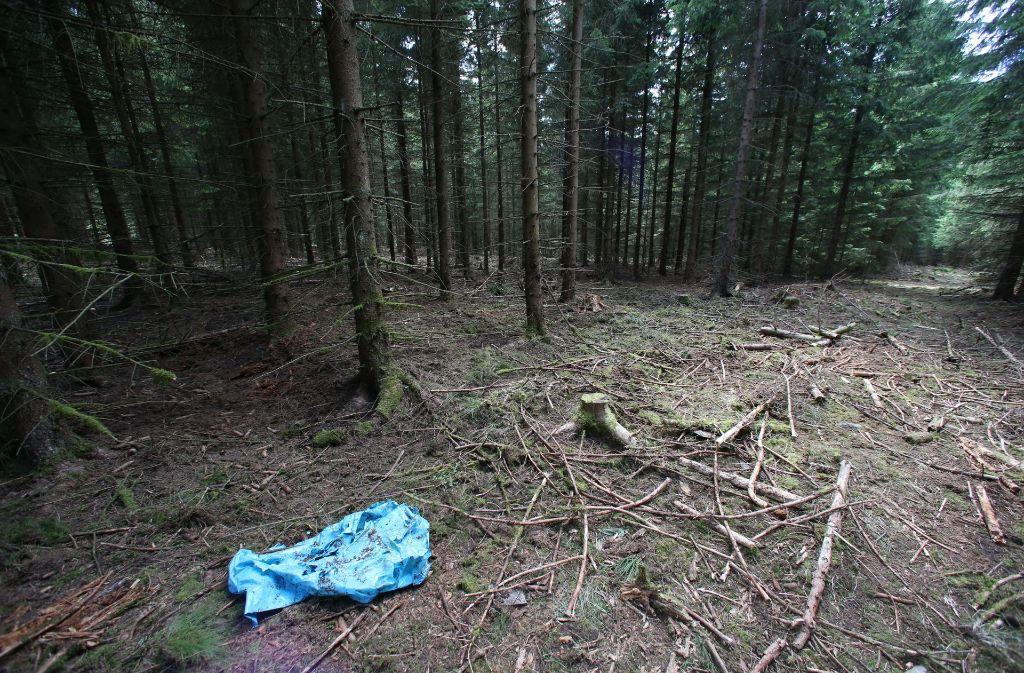 In einem Waldstück im Saale-Orla-Kreis bei Rodacherbrunn (Thüringen) sind Skelettteile von Peggy gefunden worden. (Archivfoto) Foto: dpa