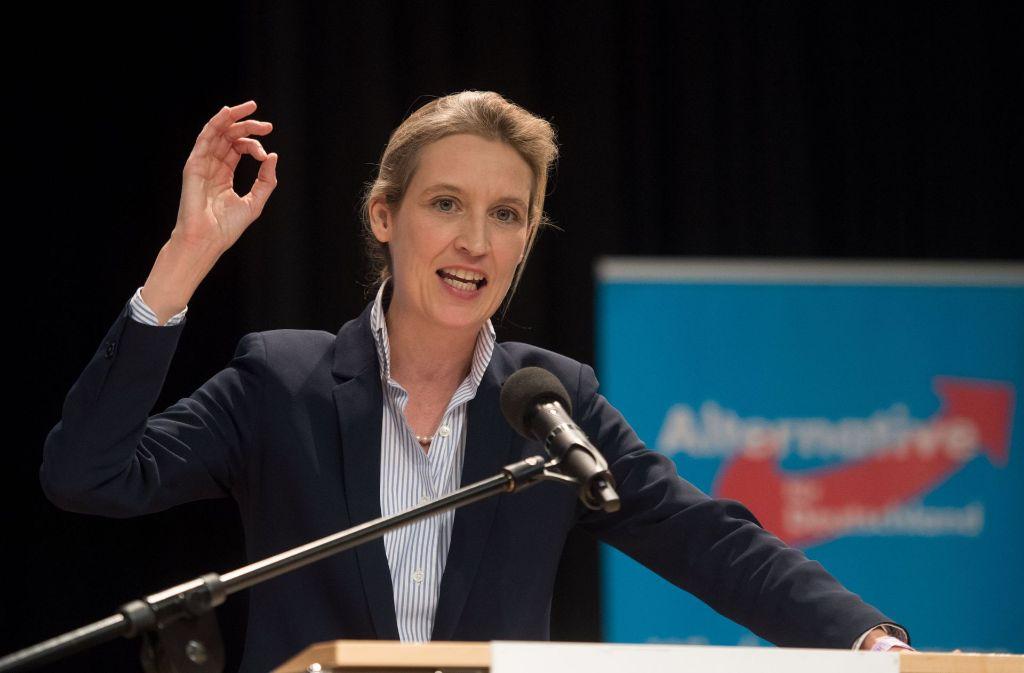 Nach dem Verzicht von AfD-Bundeschefin Frauke Petry schlägt die baden-württembergische AfD Alice Weidel als Spitzenkandidatin zur Bundestagswahl vor. Foto: dpa