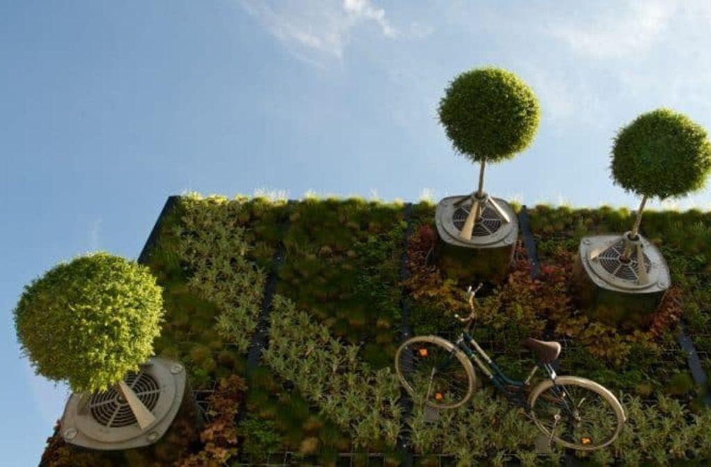 Waagrechte Bäume an begrünten Fassaden - das ist das Konzept des Hohenheimer Startups Visioverdis. Foto: Lichtgut/Willikonsky