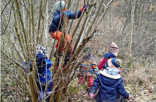 Waldkinder ziehen jetzt auch nach Rutesheim