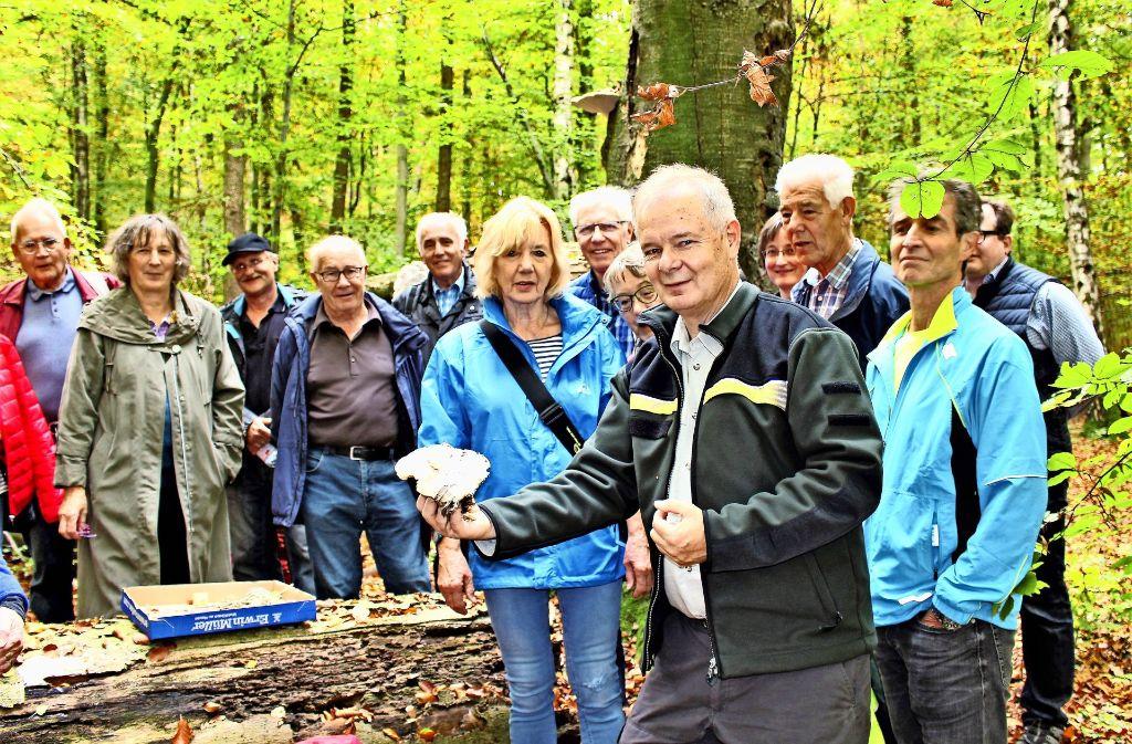 Revierförster Wolfgang Heckel zeigt den Wanderern vom Bürgerverein Heumaden einen Pilz, genauer gesagt eine Nebelkappe. Foto: Caroline Holowiecki