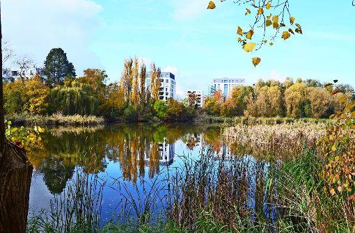Bürger beklagen Parkplatznot im Seepark