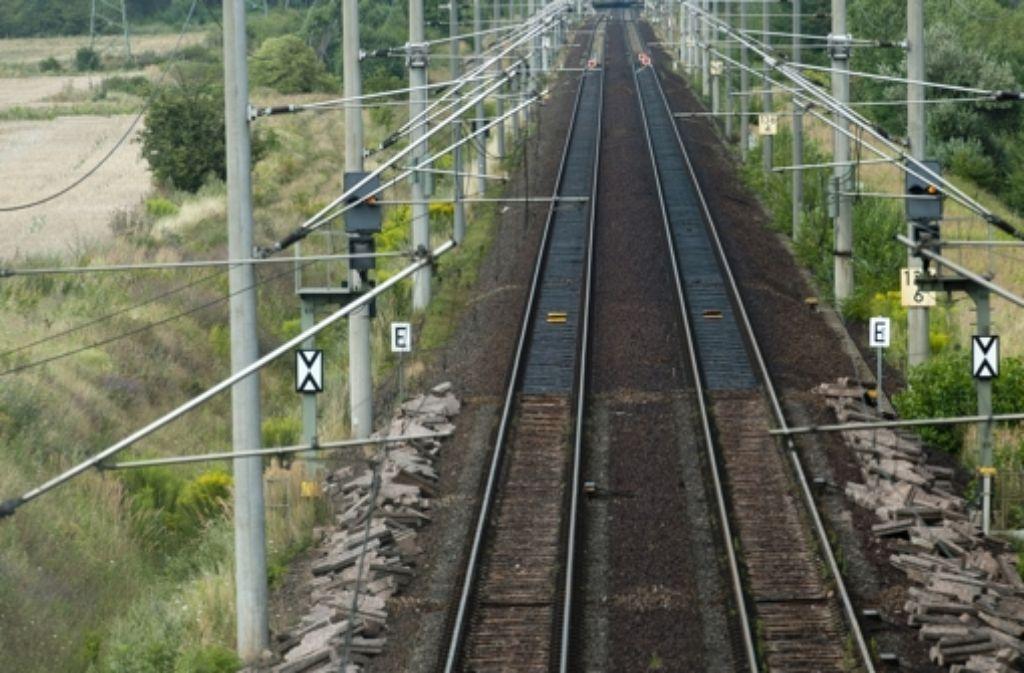 Die Deutsche Bahn müsse mehr in den Ausbau der Gleise investieren, monieren Kritiker der Bahn wie der Verkehrsclub Deutschland. Foto: dapd
