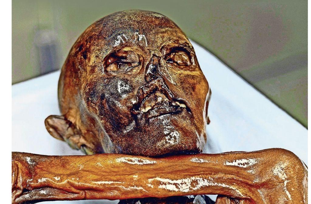 Gefriergetrocknet im Eis eines Gletschers: Die Mumie des wohl berühmtesten Steinzeitmenschen. Foto: Südtiroler Museum für Archäologie