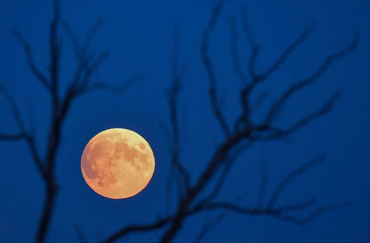 Wer das Gleis 5 in Vaihingen entdecken will, muss auf die  dritte Mondnacht warten –  meint unser Leser Abdullah Bayram. Foto: dpa/Patrick Pleul