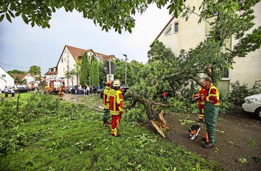 Gewittersturm trifft wieder einmal Filderstadt