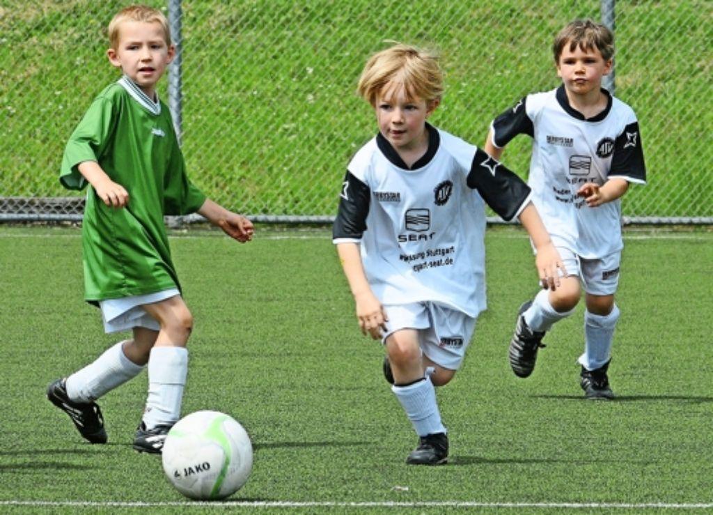 Von klein bis mittelgroß ist alles dabei: Bei der nunmehr 17. Auflage des Klinsmann-Cups beim  ASV Botnang werden 80 Jugendfußballteams vertreten sein. Foto: Günter Bergmann