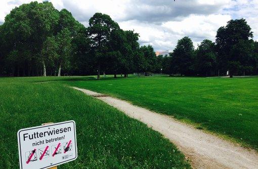 Stuttgarts grüne Lunge schrumpft