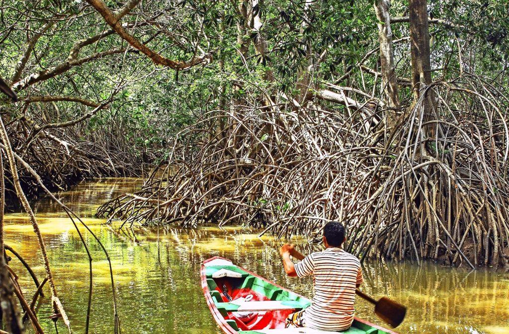 Mit dem Boot sind Fischer und Touristenführer auf dem Rio Parnaiba im Osten Brasiliens unterwegs. Foto: André Pessoa, Rainer Kurlemann