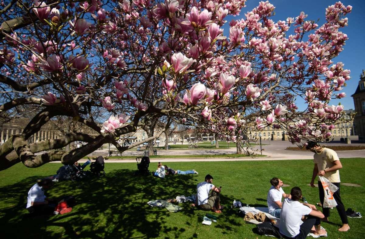 Das gute Wetter ist zum Wochenbeginn erst mal passé. Foto: Lichtgut/Leif Piechowski