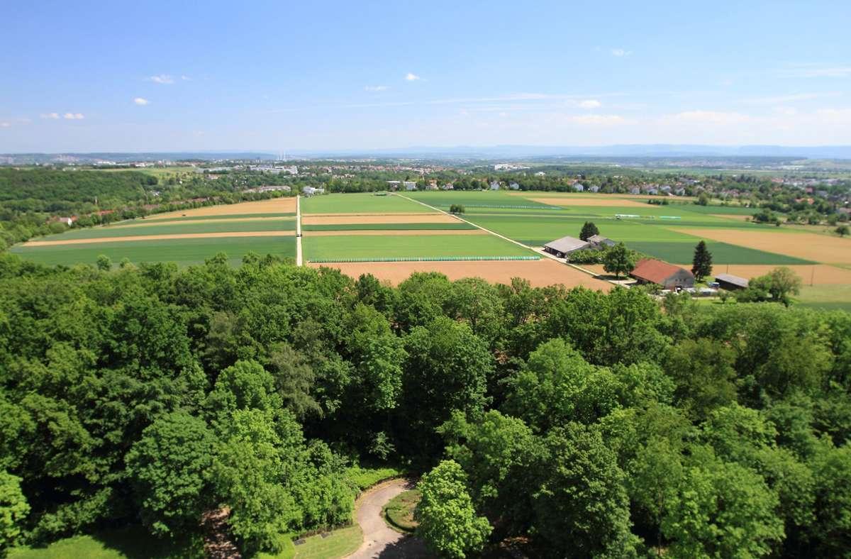Das  Birkacher Feld soll erhalten werden, fordert  das Aktionsbündnis. Foto: Seyfferth/privat