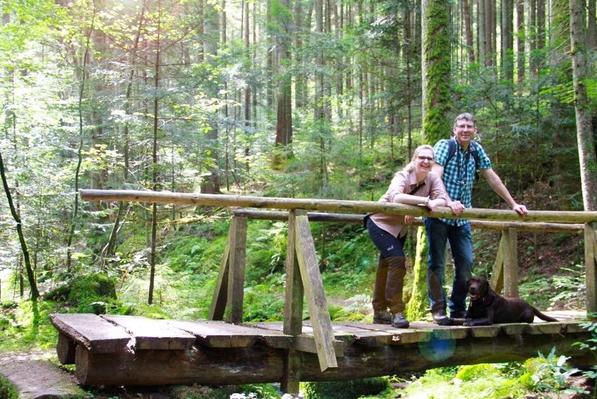 Alte Holzbrücke mitten im Wald: abseits der bekannten Pfade lassen sich im Nördlichen Schwarzwald ungeahnte Schönheiten entdecken. Foto: Tourismus GmbH Nördlicher Schwarzwald