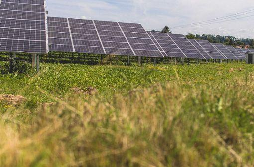 EnBW nimmt Deutschlands größtem Solarpark in Betrieb