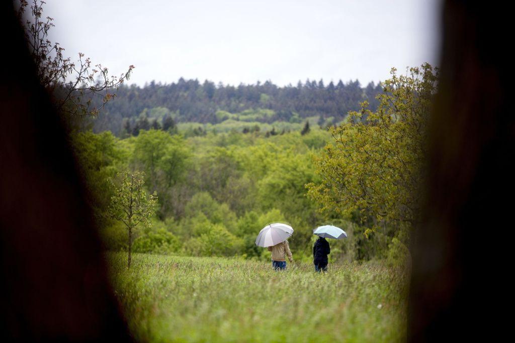 Wer im Schurwald wohnt, für den gibt es kein schlechtes Wetter.  Die Bäume und die Wiesen laden  zum Spaziergang ein. Foto: