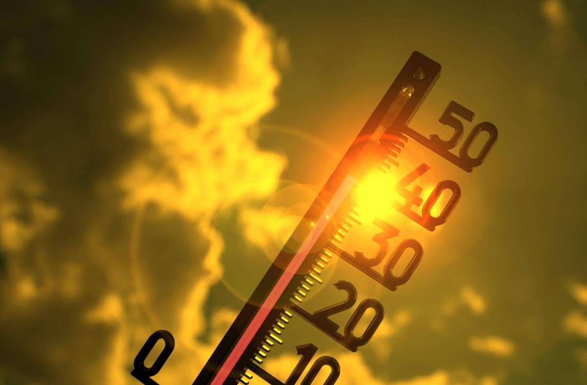 40 Grad im Juni hat es seit Beginn der Aufzeichnungen noch nicht gegeben. Foto: imago images/imagebroker