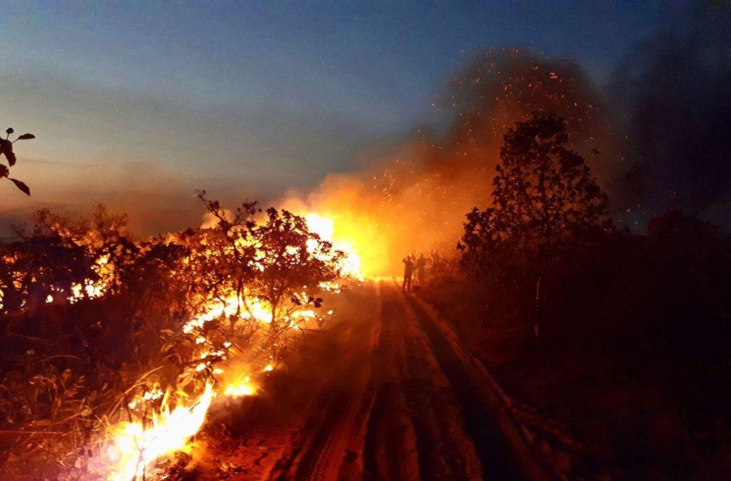 Seit Tagen wüten riesige  Waldbrände in Brasilien. Foto: dpa