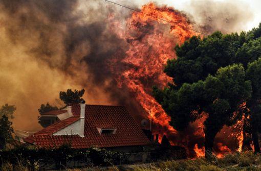 Behörden vermuten Brandstiftung