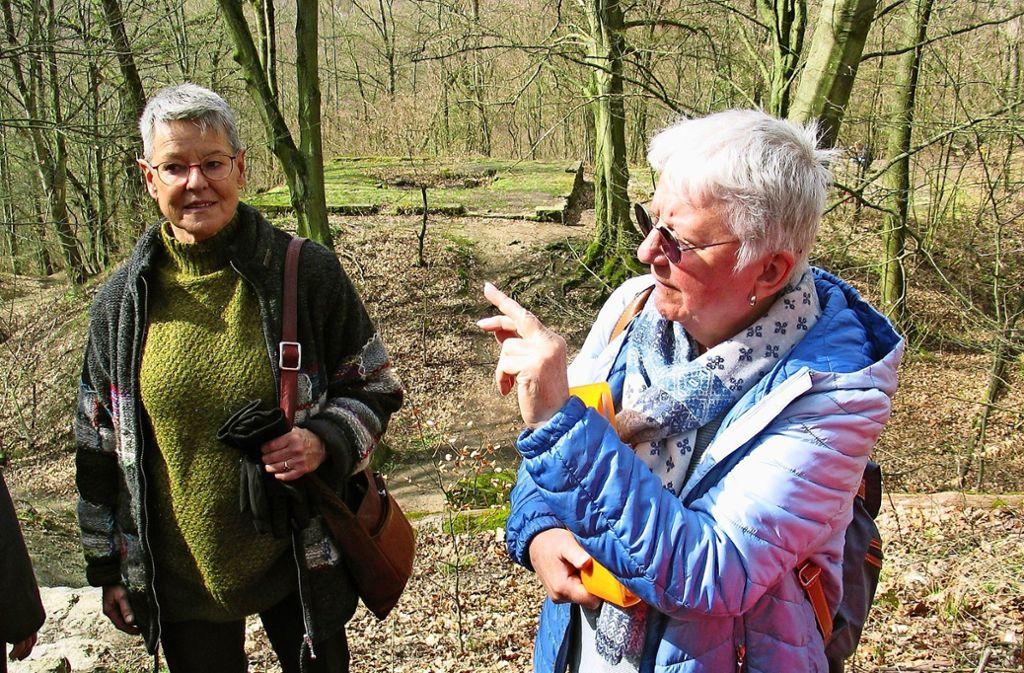 Edeltraud John wusste Interessantes zur Dischinger Burg zu berichten, deren Überreste im Hintergrund zu sehen sind. Foto: Müller-Baji