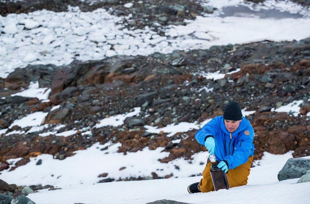 Eine Greenpeace-Expedition will herausgefunden haben: Die Lebensräume der Antarktis sind mit kleinsten Plastikteilchen und umweltschädlichen Chemikalien belastet. Foto: Greenpeace United Kingdom