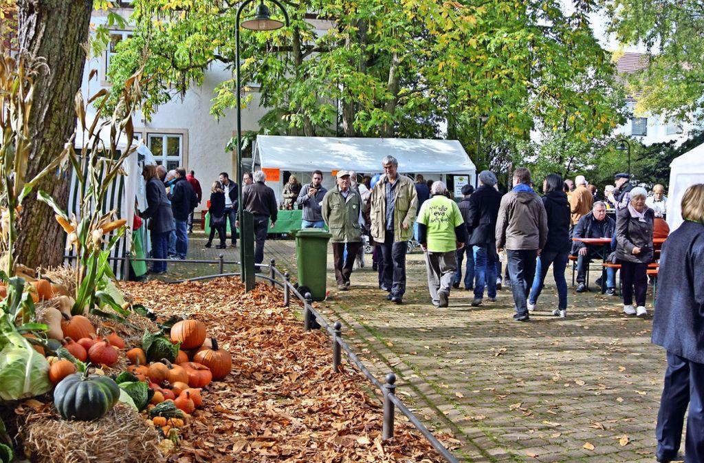 """Der Möhringer Herbst ist auch in diesem Jahr ein gesetzter Termin. Der GHV lädt zudem wieder zur langen Einkaufsnacht """"Freitag XXL"""" ein. Foto: Archiv Stefanie Käfferlein"""
