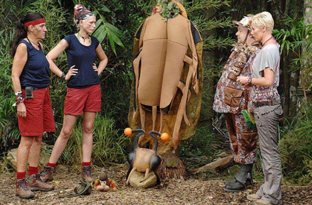 Die schlagzeilenträchtige Dschungelshow Ich bin ein Star - holt mich hier raus vereint im Frühjahr wieder Kakerlaken und abgehalfterte Promis. Foto: RTL