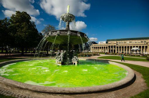 Umweltorganisation färbt Brunnen am Schlossplatz  giftgrün