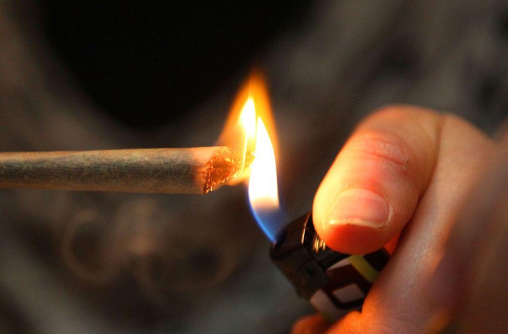 Bei einem der 30 kontrollierten Schwerlastfahrern wurde Marihuana im Führerhaus gefunden. Foto: dpa