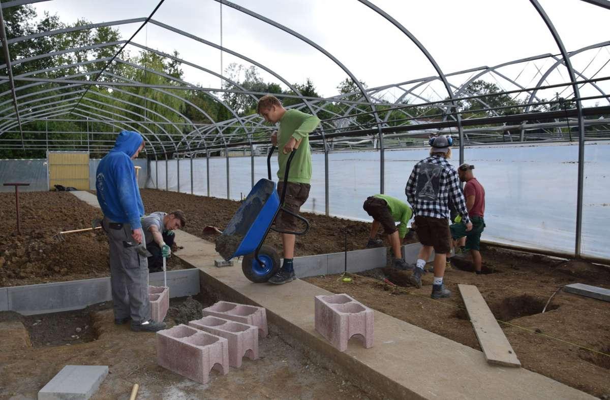 Berufsschüler der Landwirtschaftlichen Schule Hohenheim haben im Sommer 2018 ihr eigenes grünes Klassenzimmer auf dem Gelände der Stadtgärtnerei gebaut. Foto: Archiv//Alexandra Kratz