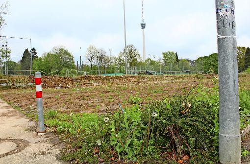 Das ist der Bauplatz für die Halle von der Ecke Keßler-/Georgiiweg aus gesehen. Foto: Baur