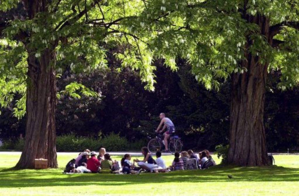 Die übrigen Bäume des Stuttgarter Schlosgartens sollen womöglich umgepflanz werden. Quelle: Unbekannt