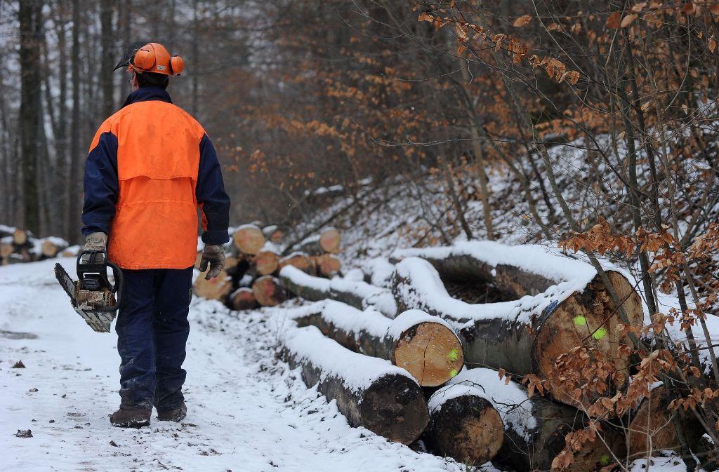 Das Bundeskartellamt legt die Säge an die althergebrachte Forststruktur. Land und Kommunen - hier ein kommunaler Waldarbeiter – müssen sich etwas Neues einfallen lassen. Foto: Kuhnle
