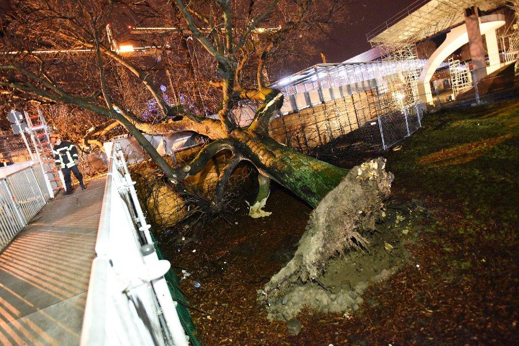 Ein Baum ist aufgrund der Sturmböen im Stuttgarter Schloßgarten auf einen Fußgängersteg gefallen. Foto: 7aktuell/Eyb