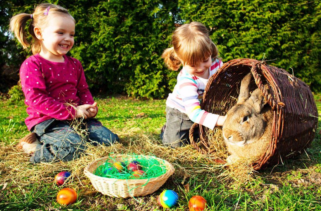 Familienfeiern an Ostern sind ein Risiko: So können beispielsweise Enkel mit dem Coronavirus infiziert sein,  ohne Symptome zu zeigen, warnen Ärzte. Foto: picture alliance / dpa