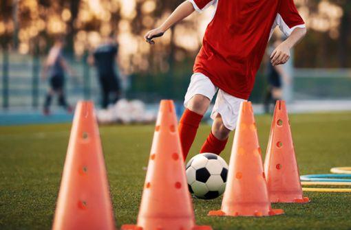 DFB appelliert an Politik: Amateur-Training wieder zulassen