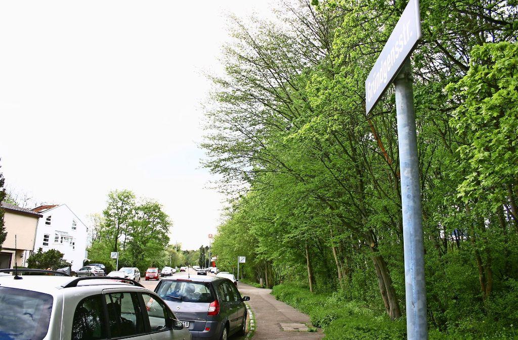 Trotz Lärmschutzwand beklagen einige Anwohner der Gründgensstraße weiterhin den Krach von der Autobahn. Foto: Archiv Kai Müller