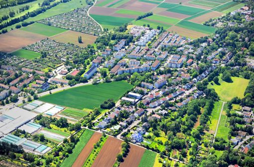 Baulöwen kontra die Stadt Ludwigsburg