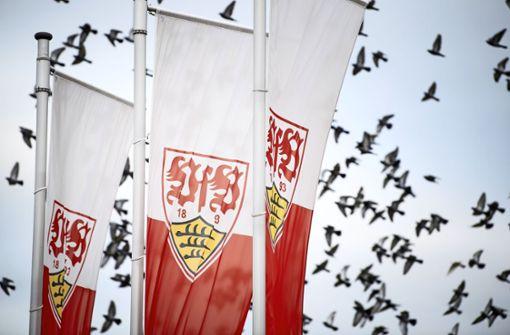 Wie der VfB Stuttgart mit der Zwangspause umgeht
