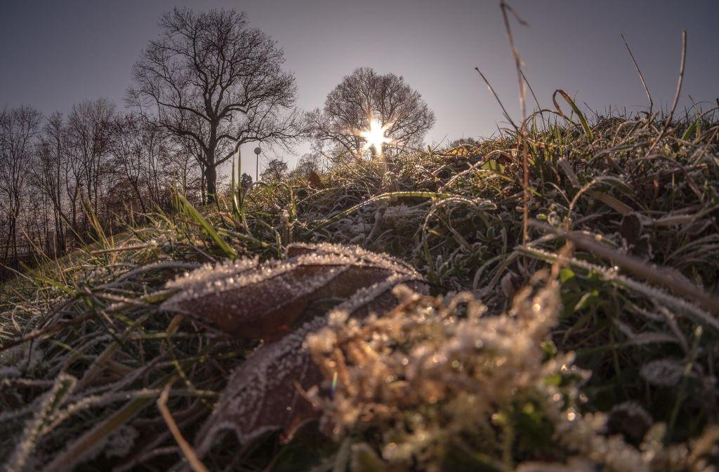 In der kommenden Woche sollen die Temperaturen bei zwischen zwei und sechs Grad liegen. Foto: Lichtgut/Max Kovalenko