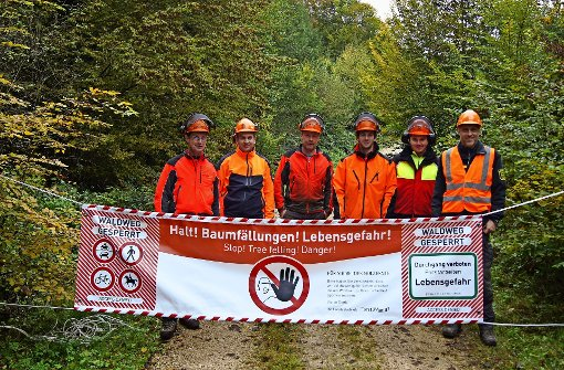 Achtung: Tree felling!