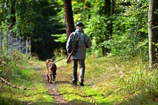 Streit um Jagdgesetz geht weiter