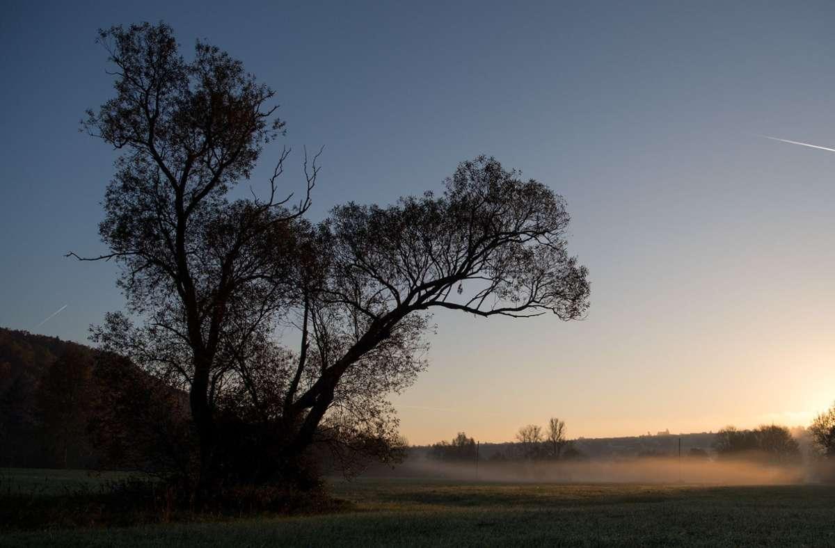Die Sonne kämpft sich am Sonntag durch den Nebel. (Symbolbild) Foto: dpa/Sebastian Gollnow
