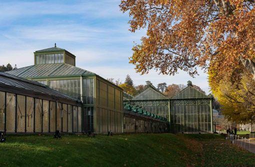 Historische Vogelhäuser aufwendig saniert