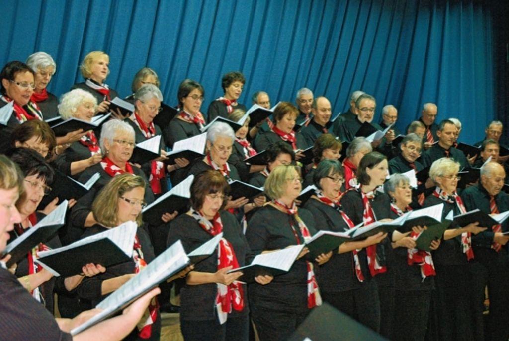 Zur Zeit singen 65 Männer und Frauen in der Chorvereinigung Weilimdorf. Foto: Archiv Georg Linsenmann