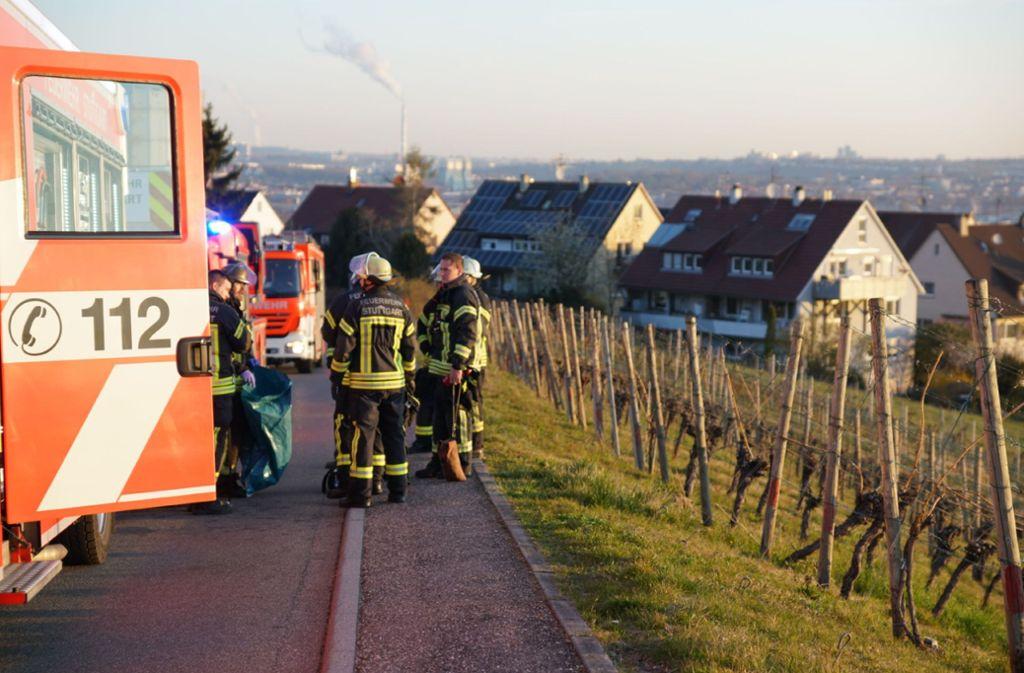 Die Feuerwehr hat keine Probleme den Brand zu löschen. Foto: SDMG//Kohls