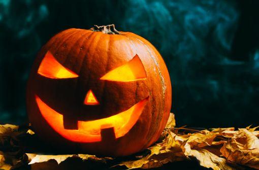 In diesem Artikel erfahren Sie, was an Halloween für Kinder und Erwachsene erlaubt ist und was verboten.