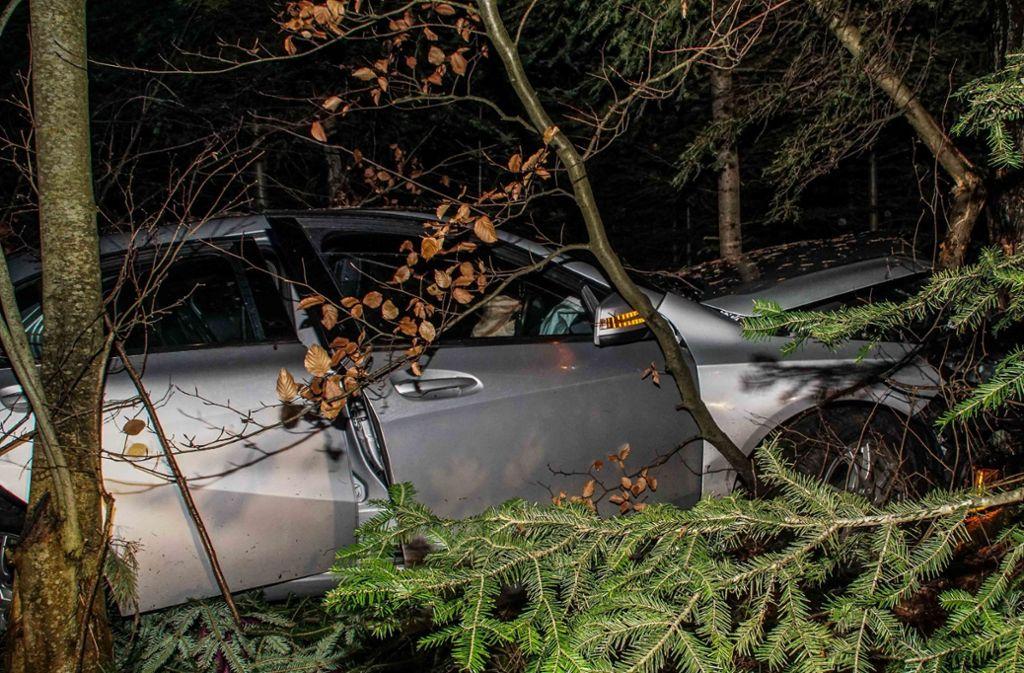 Bei einem Wildunfall in Weil der Stadt sind drei Frauen verletzt worden. Foto: SDMG