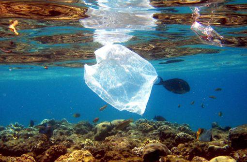 Global Plastic Navigator zeigt Ausmaß der Verschmutzung